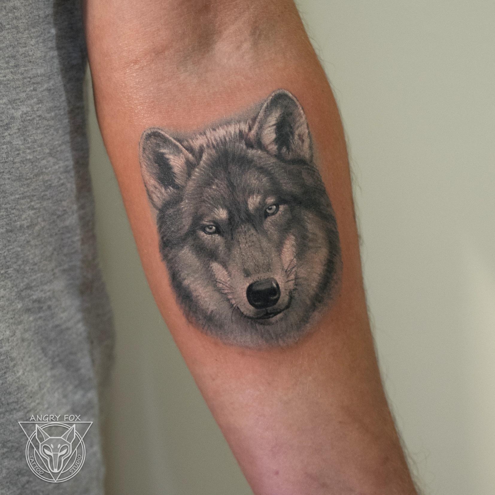Татуировка, тату, рука, предплечье, волк, реализм